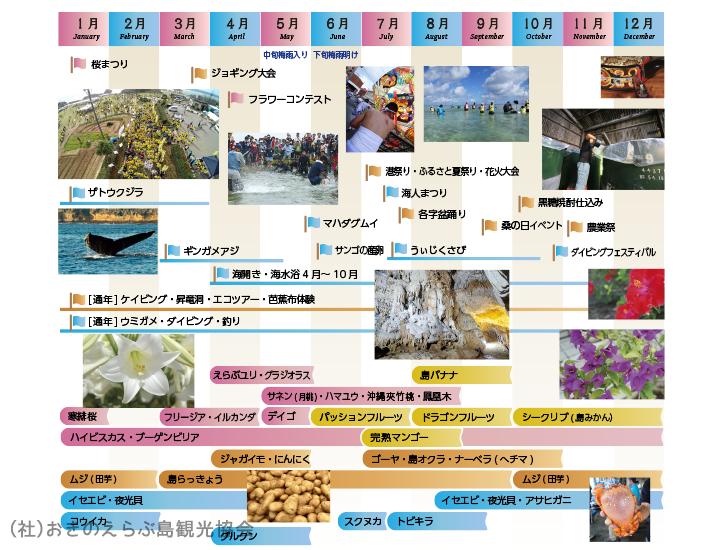 沖永良部島の気候・シーズン