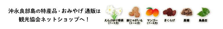 沖永良部島の特産品やおみやげなどはネットショップにて好評発売中!